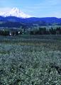 NRCSOR02017 - Oregon (5883)(NRCS Photo Gallery).tif