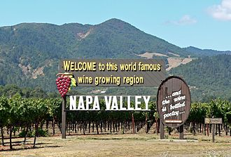 Napa County, California - Image: Napa Valley welcome sign