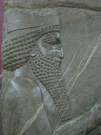 Xerxes I - Probable depiction of Xerxes I as crown-prince, in the Audience scene of Darius, Persepolis.