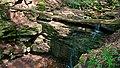 Naturpark Neckartal-Odenwald Margarethenschlucht 10.jpg