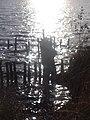 Naturschutzgebiet Ewiges Meer 31-10-2018 Chr Didillon DSC01778 (96).jpg