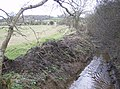 Near Hillfoot Farm - geograph.org.uk - 350960.jpg