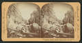 Neath majestic granite walls and by the rushing mountain stream, Boulder county, Colo., U.S.A, from Robert N. Dennis collection of stereoscopic views.png