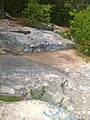 Nehantic Trail - Mount Misery summit.jpg