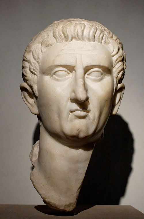 Upon the death of Domitian, Nerva was proclaimed Emperor by the Senate. Nerva Tivoli Massimo.jpg