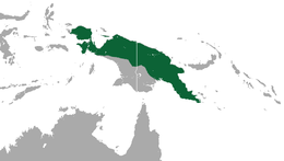 New Guinea Quoll area.png