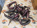 New Orleans Farmers Market Uptown Aug 2011 Eggplants 2.JPG