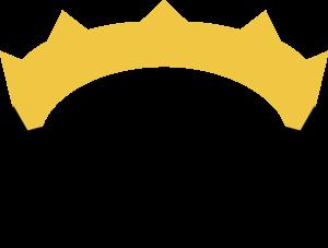 Nim-logo.png