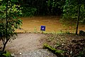 No swimming! (5217037748).jpg