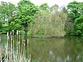 North Dalton village pond - geograph.org.uk - 6889.jpg