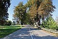 Nová Buková, Road No 112, parkway.jpg