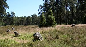 Poland in Antiquity - Stone circle in Odry