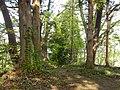 Okuse, Towada, Aomori Prefecture 034-0301, Japan - panoramio (5).jpg