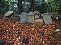 Old stones of Kuniyoshi-jo.jpg