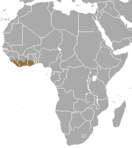 Olive Colobus area.png