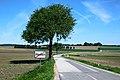 Ollersbach Ortsende L2018.jpg