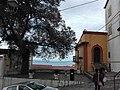 Olmo Terravecchia2.jpg
