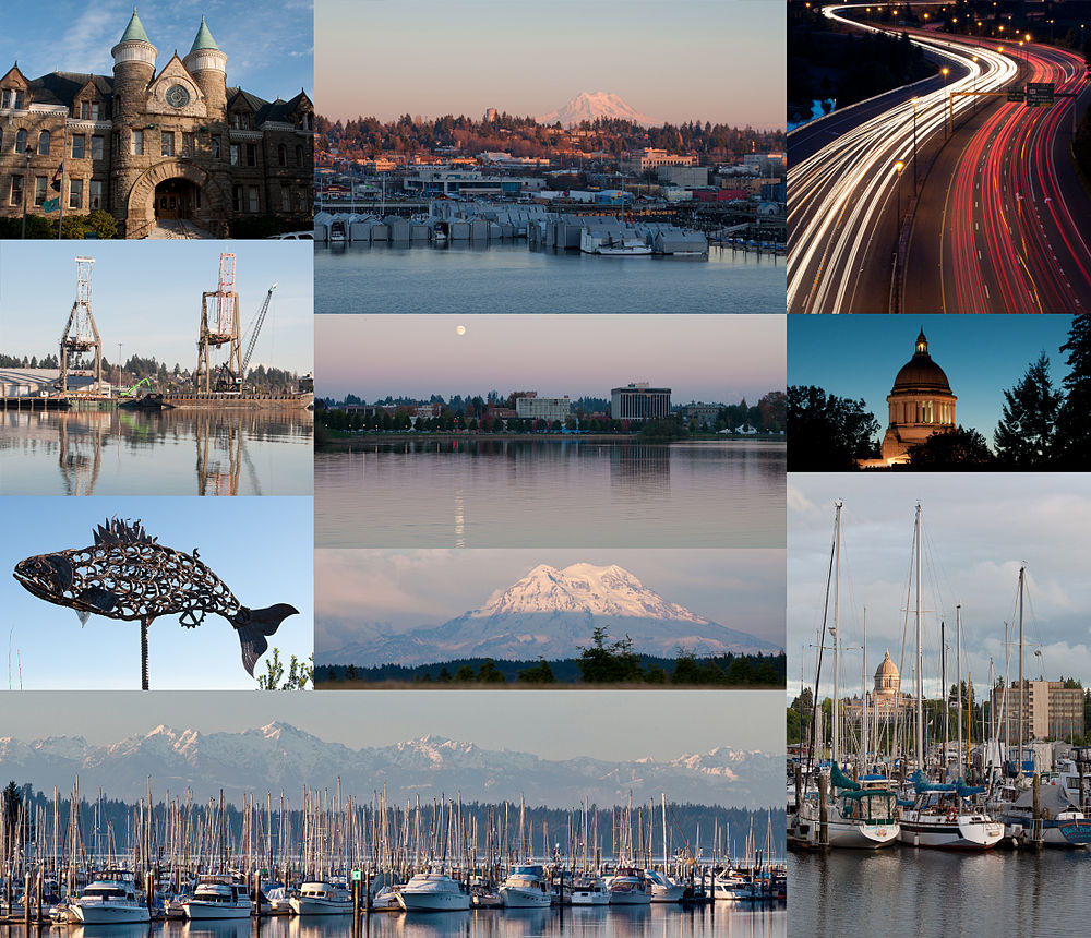 The population density of Olympia in Washington is 894.15 people per square kilometer (2315.79 / sq mi)