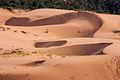 One of the bigger dunes in the state park (8078515437).jpg