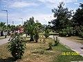 Ordu - panoramio - Öner Akgün (11).jpg