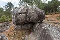Outeiro da pena redonda. Parque arqueolóxico de Campo Lameiro CL13.jpg