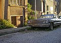 Overgrown Oldtimer (81585251).jpeg