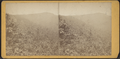 Overlook Mountain House, distant view, by D. J. Auchmoody.png