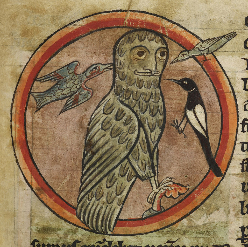 File Owl Mobbed By Smaller Birds Bestiary 1230 1240 F
