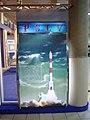 PSLV - India And Space - Science City - Kolkata 2006-07-03 04627.JPG