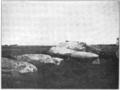 PSM V75 D136 Dolmen of mane retual locmariaquer.png