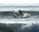 Paddle surfing 6 2008.jpg