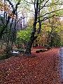 Paisagem do Parque Nacional da Peneda - Gerês 10.jpg
