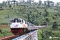 Pangandaran Train (KLB 12412).jpg