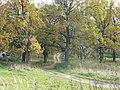 Panoramio-39827708.jpg