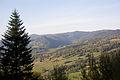 Park krajobrazowy Popradzki Park Krajobrazowy. Widok ze szczytu Kicarz.jpg
