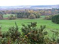 Pasture Land on the Dochgarroch Lodge Estate - geograph.org.uk - 276987.jpg
