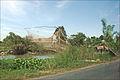 Paysage des rives du Bassac (île du Tigre, Vietnam) (6635500715).jpg