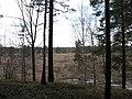 Pervomaysky District, Tomsk Oblast, Russia - panoramio (19).jpg