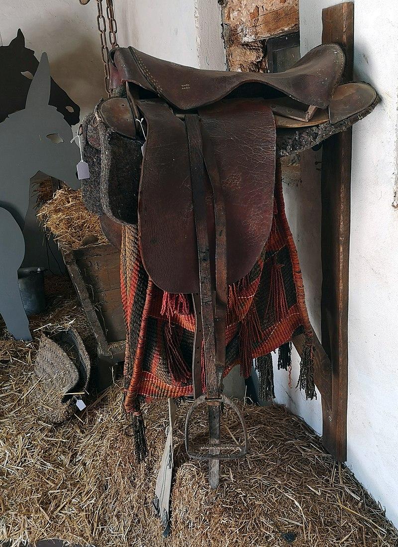 """ריתמת סוס במוזיאון ראשל""""צ"""