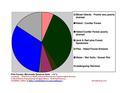 Pine County MN Pie Chart Wiki Version.pdf