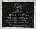 Piotrowice Dolne, Krowiarki (4).JPG