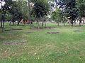 Pisz - cmentarz przy ul Dworcowej 2012 (33).JPG