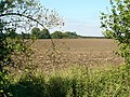 Ploughed fields - geograph.org.uk - 534976.jpg