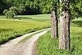 Poertschach Winklern Am Kåte Fahrweg zum Kleinen Gaisruecken 14052012 888.jpg