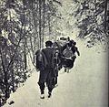Pohod 14. divizije po Paškem Kozjaku.jpg