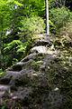 Polenztal - Elbsandsteingebirge - WLE 2015 - 02.jpg