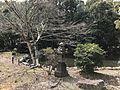 Pond of Miyazaki Shrine.jpg