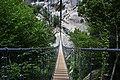 Ponte nepalese di Castelmezzano.jpg