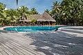 Poolbar Malediven (29338732462).jpg