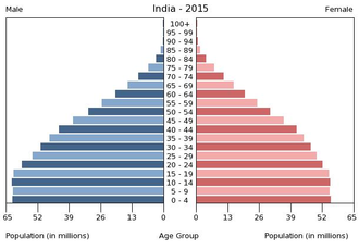 Population momentum - Population pyramid of India showing the beginning of  population momentum even though their birth rates have been declining since 1955